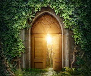Divine Wild Intuitive Coaching